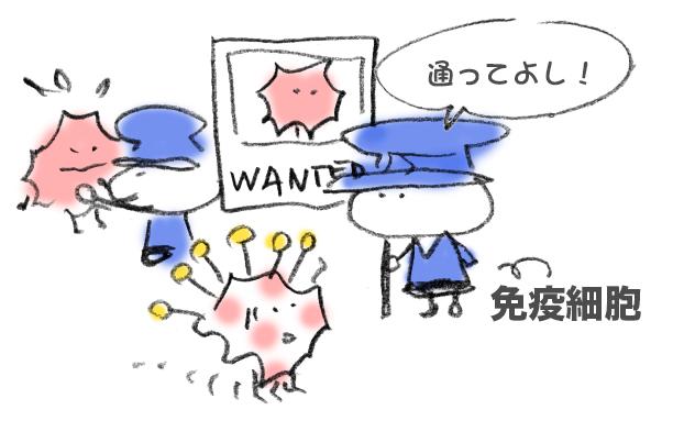 f:id:morika-wa:20200406010043p:plain