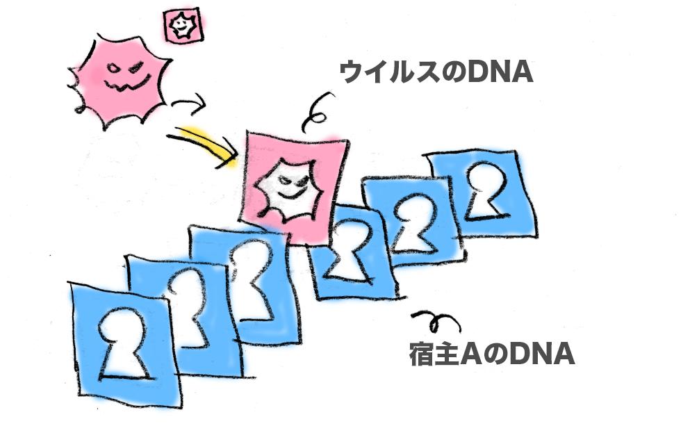 f:id:morika-wa:20200414004326p:plain