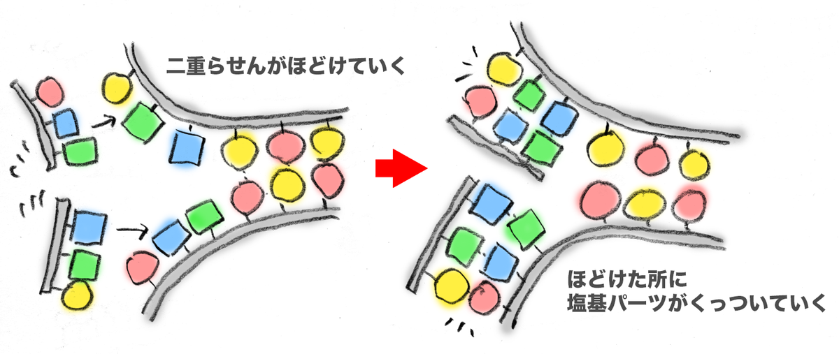 f:id:morika-wa:20200430162950p:plain