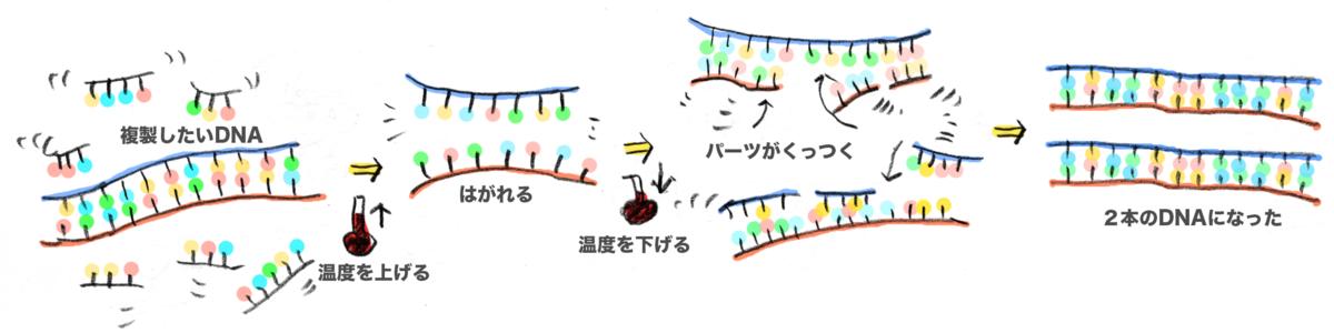 f:id:morika-wa:20200430163845p:plain