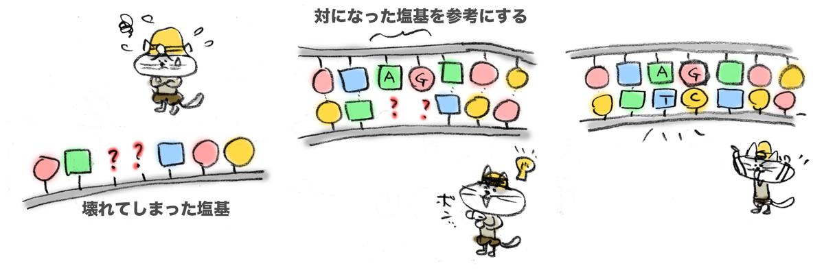 f:id:morika-wa:20200430163952p:plain