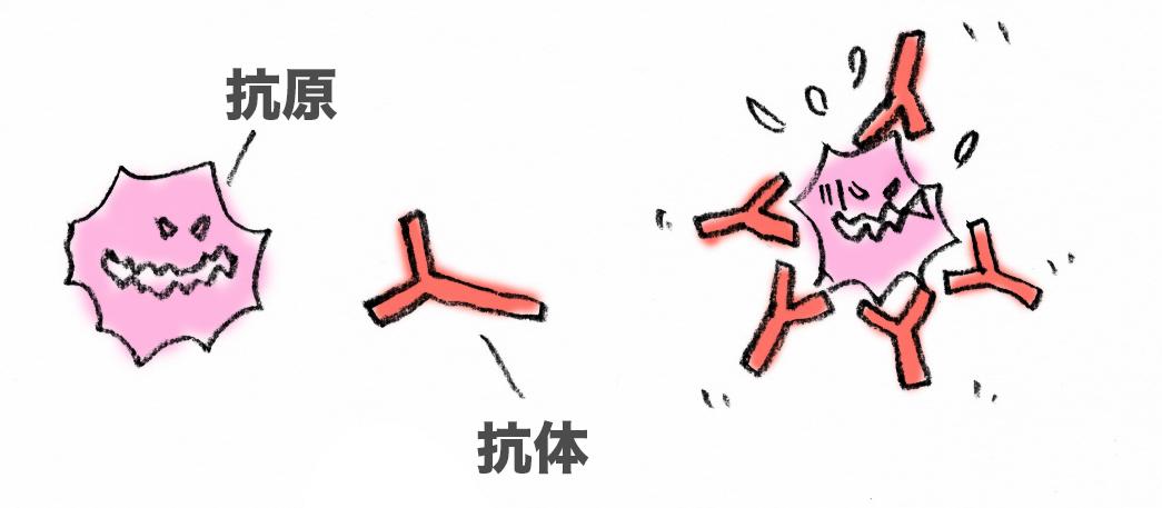 f:id:morika-wa:20200615014057p:plain