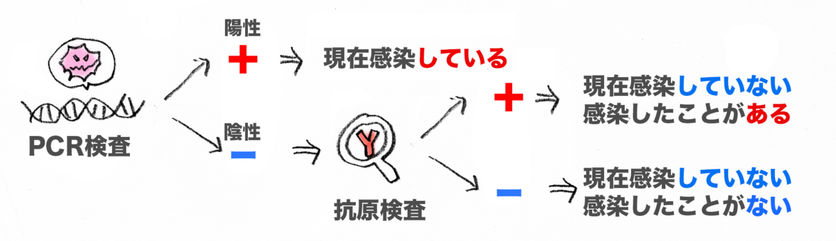 f:id:morika-wa:20200615014456p:plain