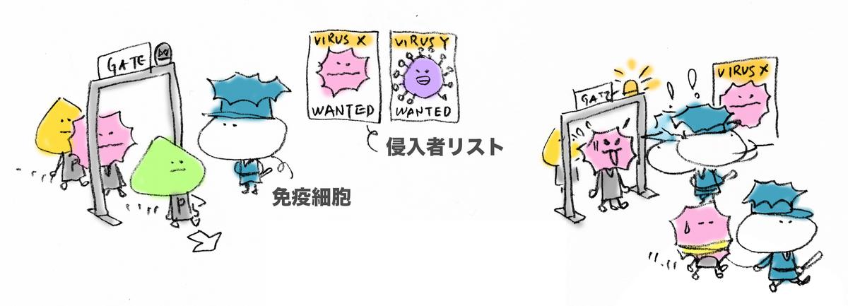 f:id:morika-wa:20200615014621p:plain