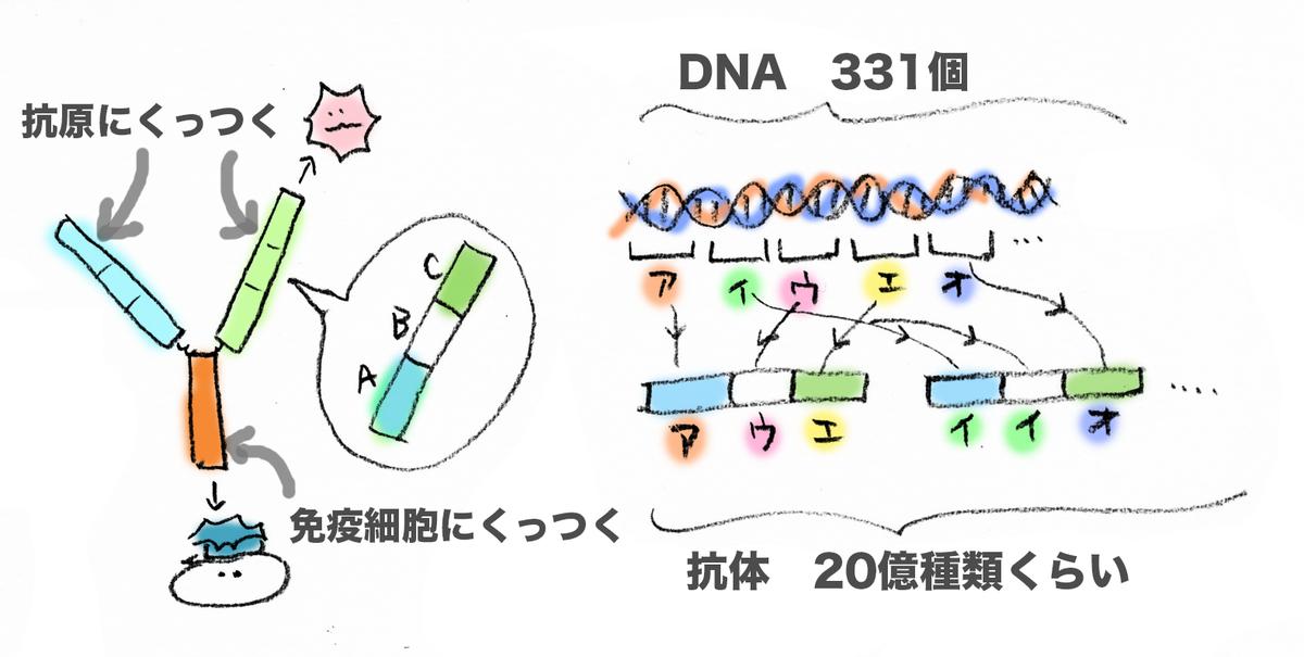 f:id:morika-wa:20200615015853p:plain