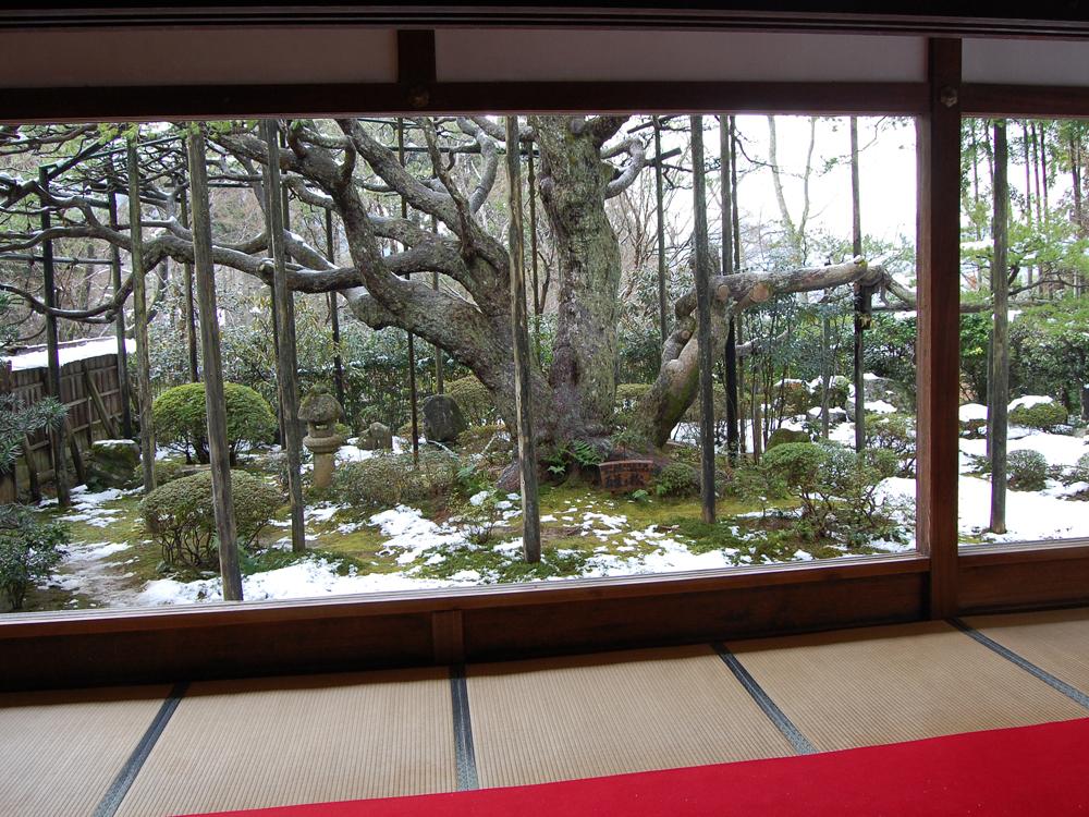 f:id:morikawatakao:20160921115443j:plain