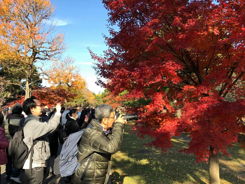 f:id:morikawatakao:20171203105613j:plain