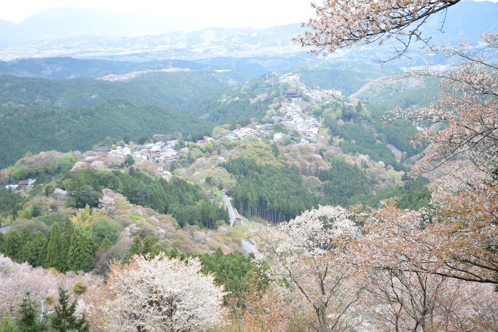 f:id:morikawatakao:20180327153940j:plain