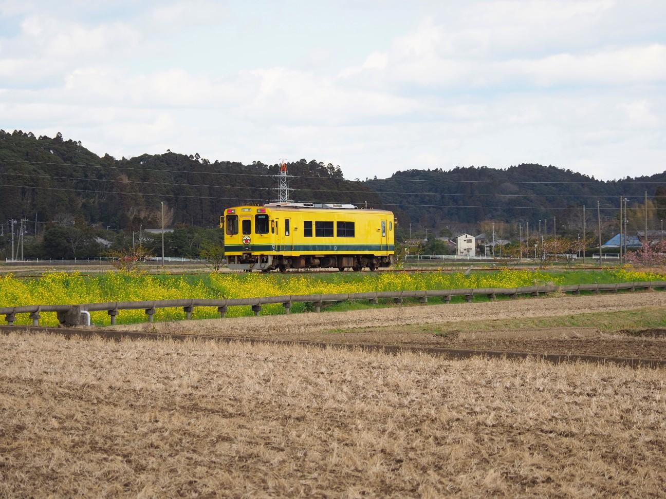 f:id:moriken-isumi:20200227134020j:image