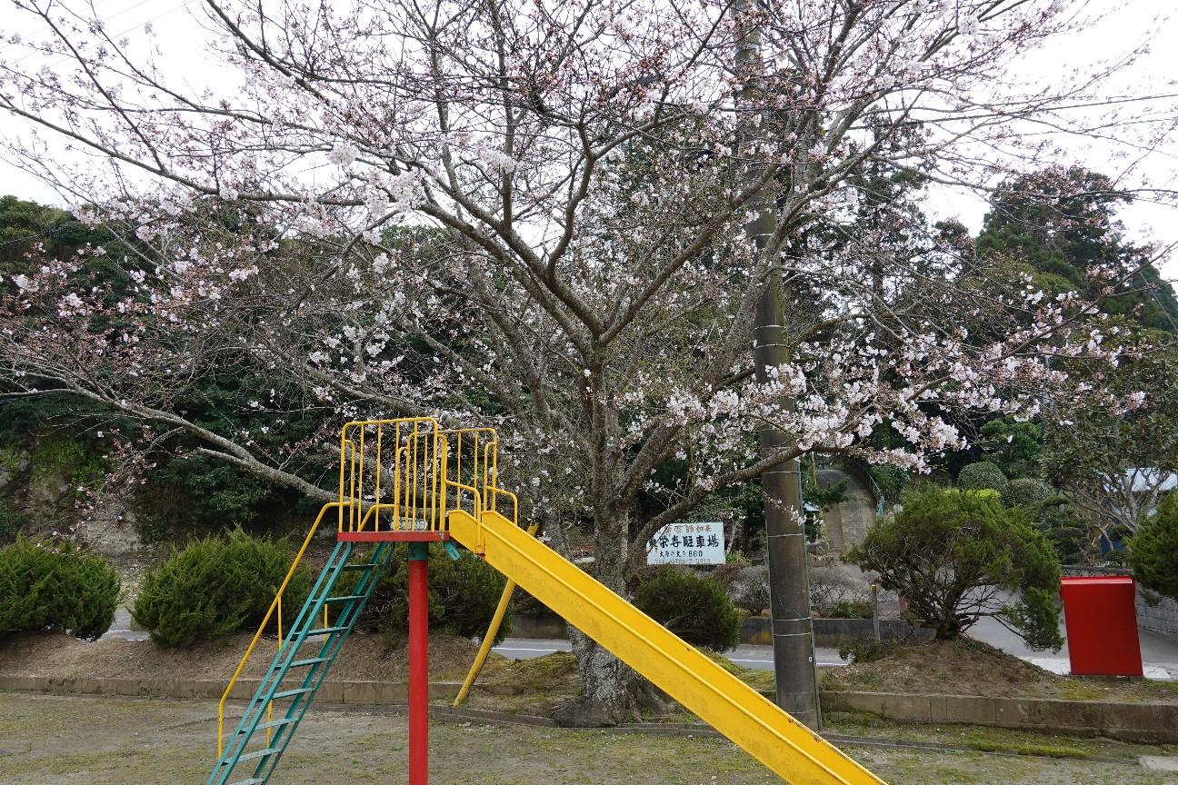 f:id:moriken-isumi:20200327143202j:image