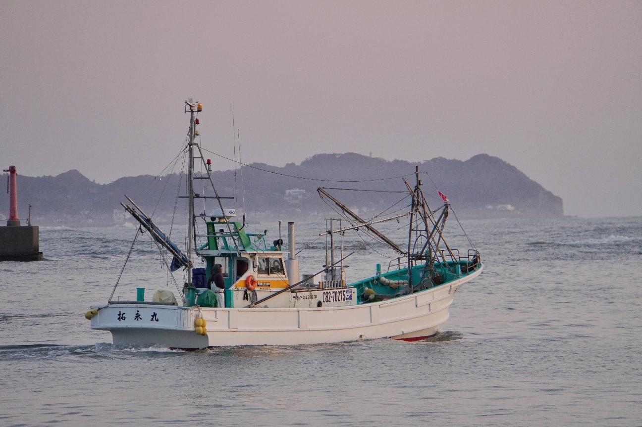 f:id:moriken-isumi:20200403062016j:image