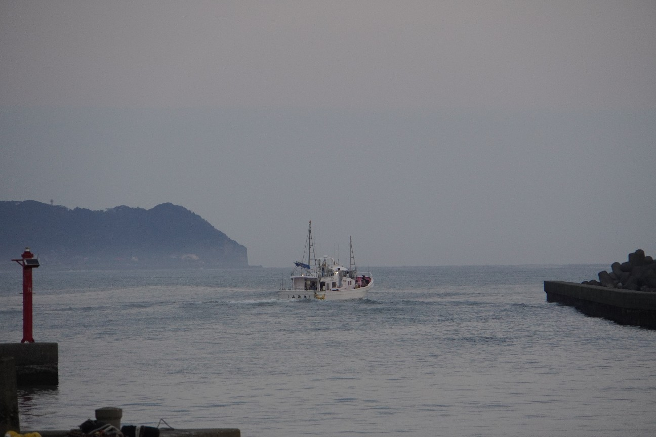 f:id:moriken-isumi:20200405060106j:image