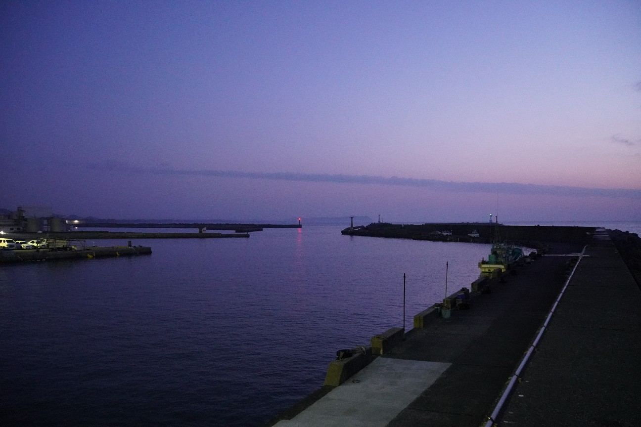 f:id:moriken-isumi:20200408165539j:image