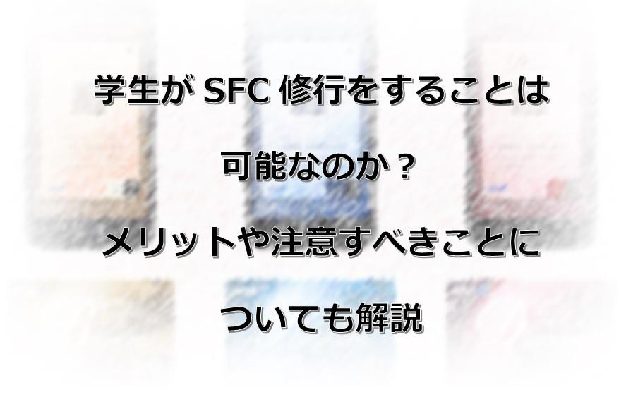 f:id:morikuma_8010:20200427102248j:plain