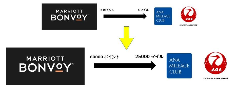 f:id:morikuma_8010:20200508174241j:plain