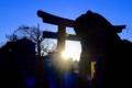 京都新聞写真コンテスト「天満宮の夜明け」
