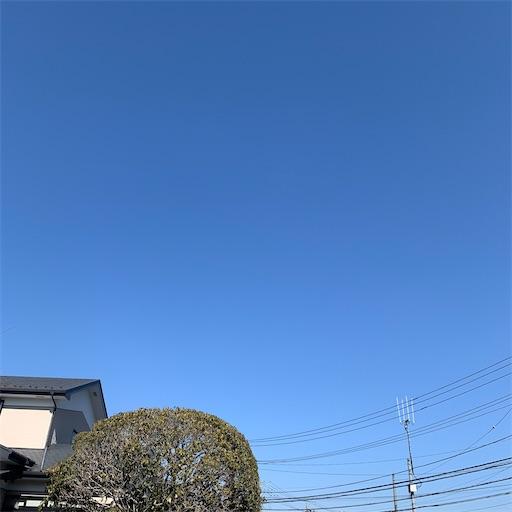 f:id:morinobanana:20210206162248j:image
