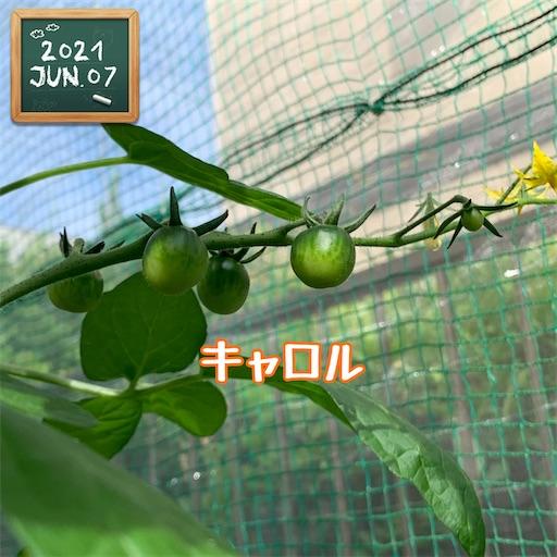 f:id:morinobanana:20210611004008j:image