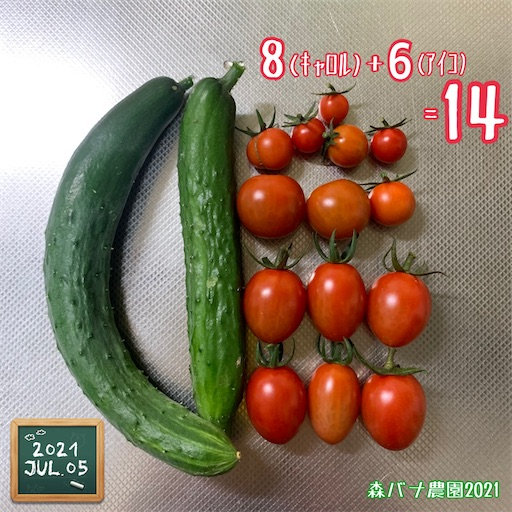 f:id:morinobanana:20210705221325j:image