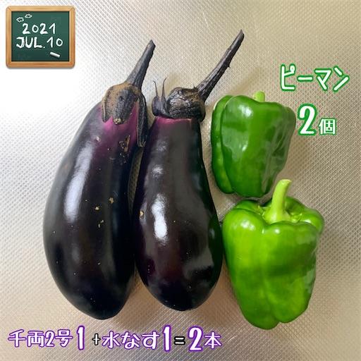f:id:morinobanana:20210713232821j:image