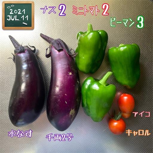 f:id:morinobanana:20210716160620j:image