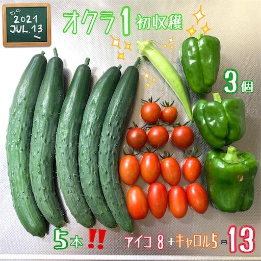 f:id:morinobanana:20210717163650j:image