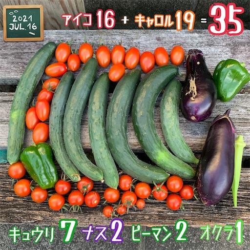 f:id:morinobanana:20210720224041j:image