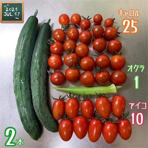 f:id:morinobanana:20210720224045j:image