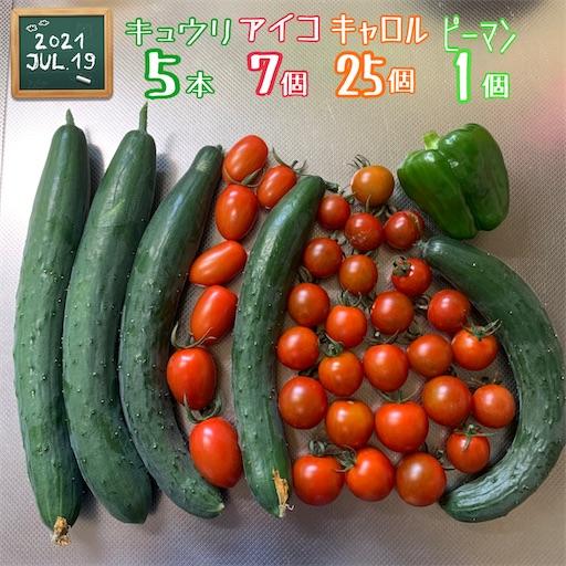 f:id:morinobanana:20210720224048j:image