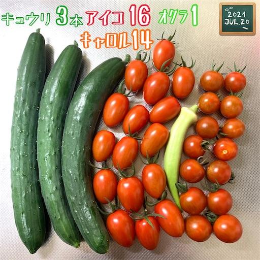 f:id:morinobanana:20210720224054j:image
