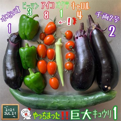f:id:morinobanana:20210721155412j:image