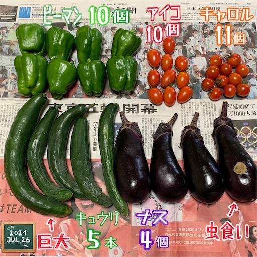f:id:morinobanana:20210730000018j:image