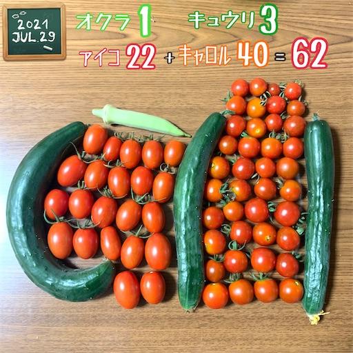 f:id:morinobanana:20210730001539j:image