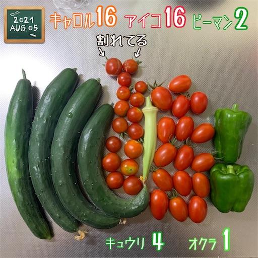 f:id:morinobanana:20210808121012j:image