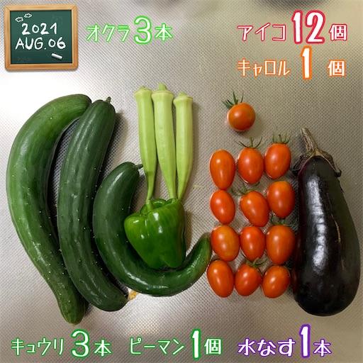 f:id:morinobanana:20210808121020j:image
