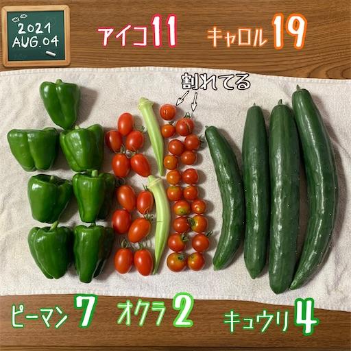 f:id:morinobanana:20210808121023j:image