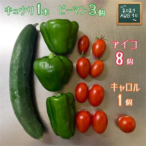 f:id:morinobanana:20210812195507j:image