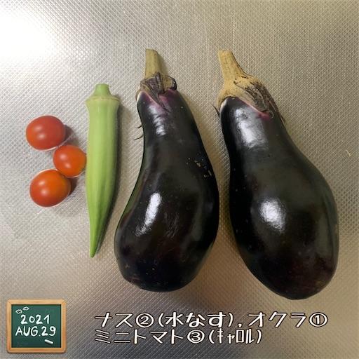 f:id:morinobanana:20210901151642j:image