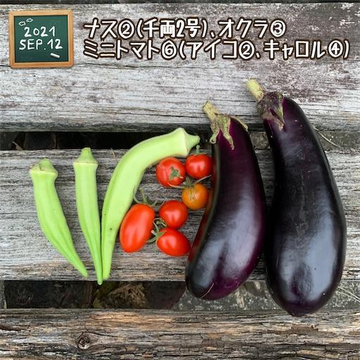f:id:morinobanana:20210916151626j:image