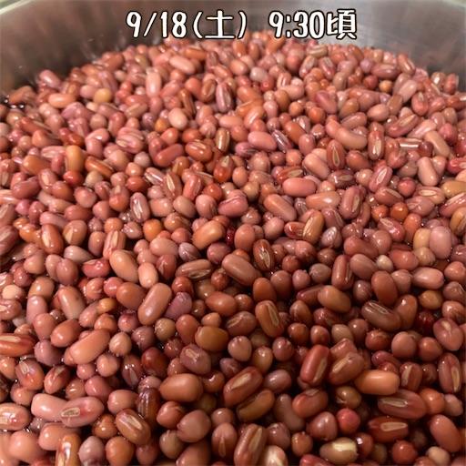f:id:morinobanana:20210924173550j:image