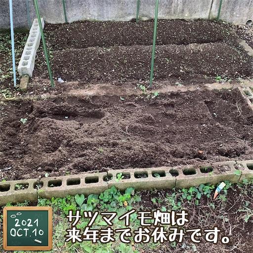 f:id:morinobanana:20211013160606j:image