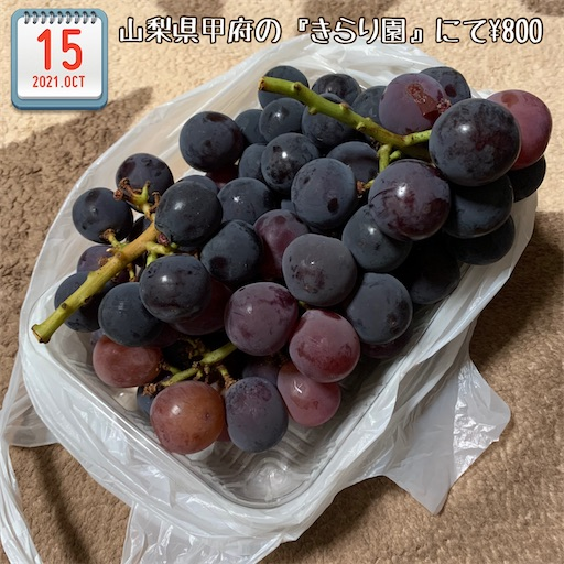 f:id:morinobanana:20211017181131j:image