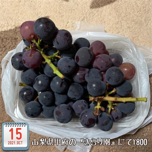 f:id:morinobanana:20211017181612j:image
