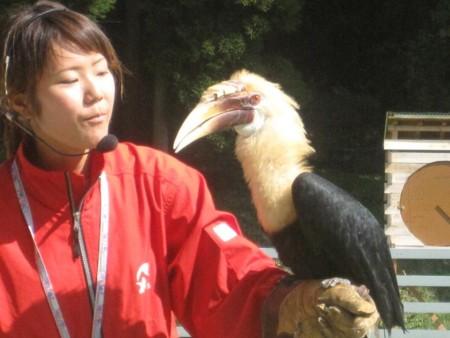 f:id:morinobu2007:20090925134413j:image