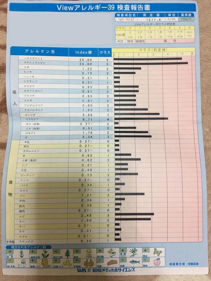 f:id:morinokmichi:20171106052144j:plain