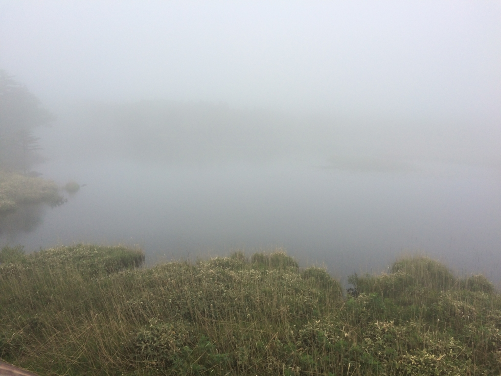 北海道・知床五湖の高架木道、一湖