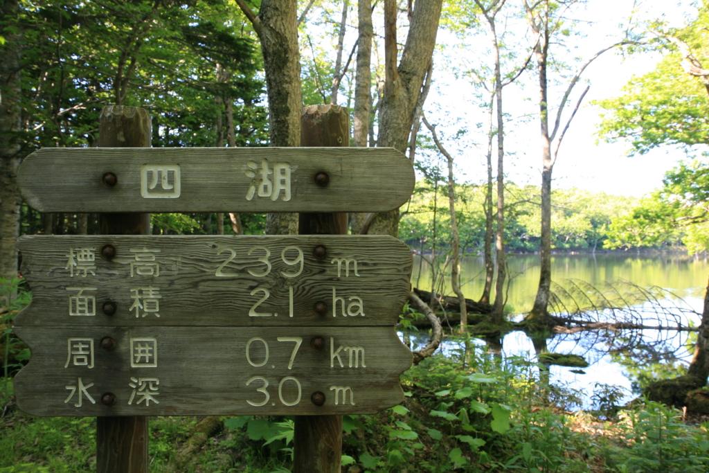 北海道・知床五湖の四湖