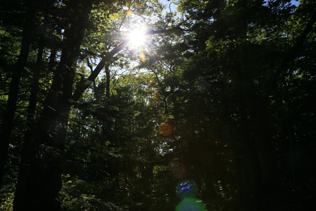 北海道・知床五湖の四湖に写る知床連山