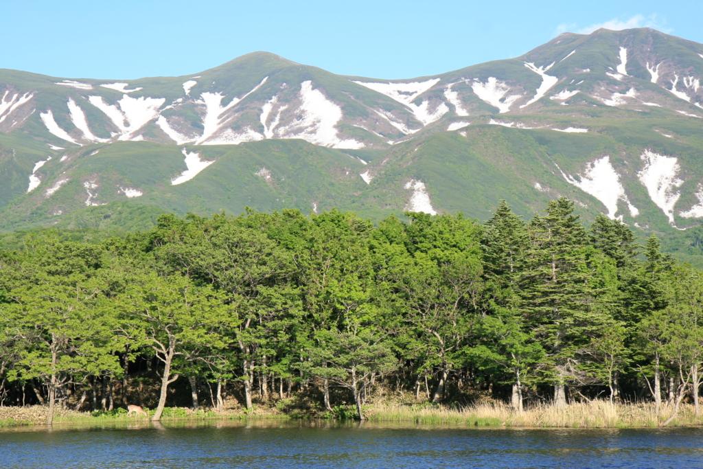 北海道・知床五湖の二湖