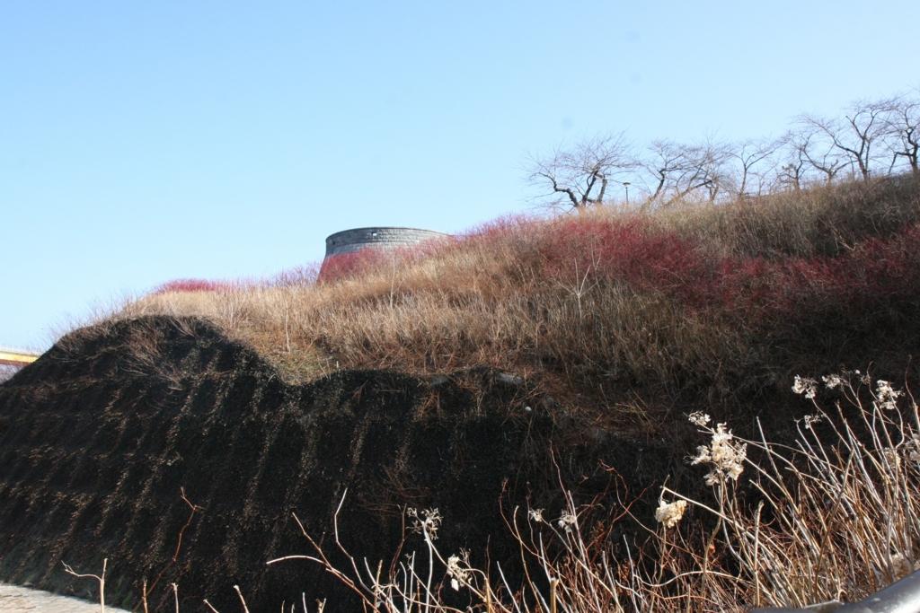 陸奥湊の館鼻公園